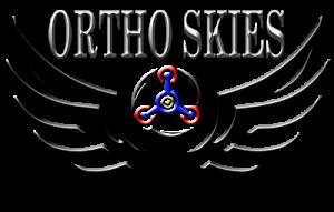 logo jasa survey pemetaan topografi drone ortho skies