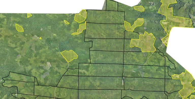 drone untuk pemetaan laha perkebunan